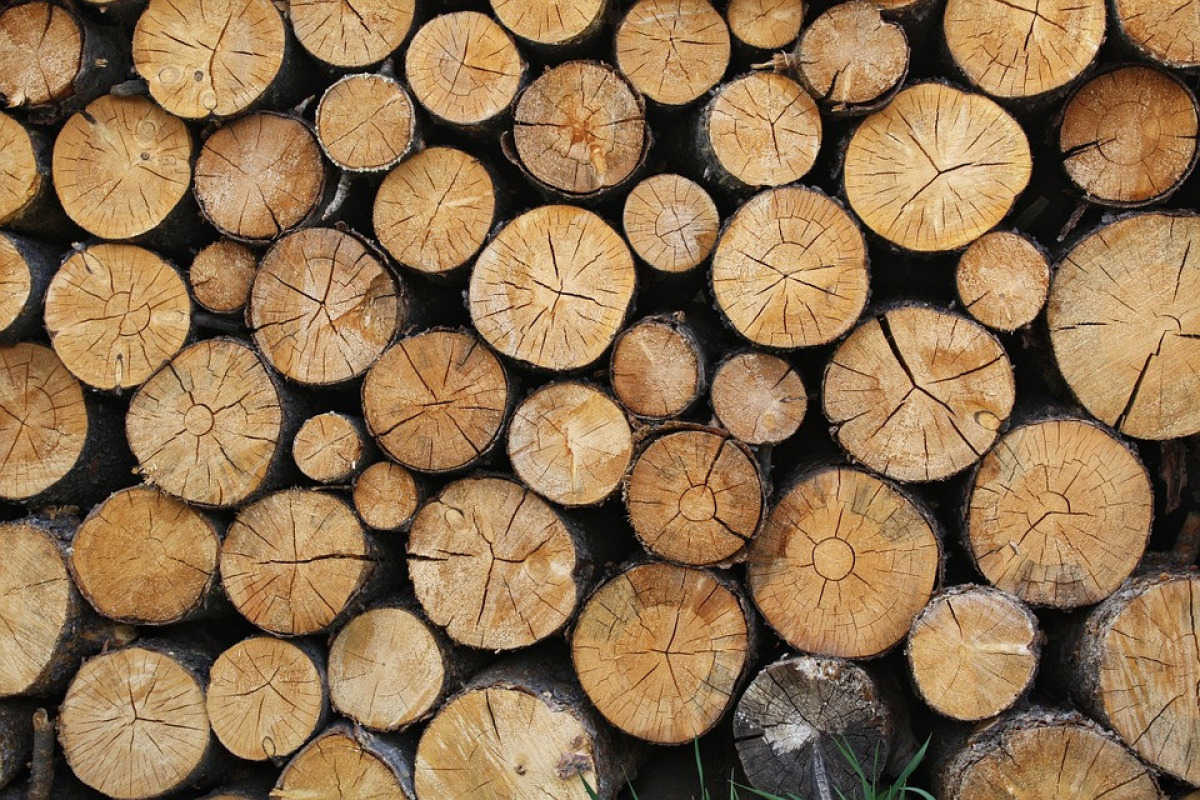 Logs 690888 960 720